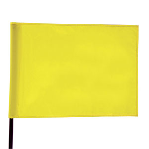 42463-Single Pin Flag with Tube
