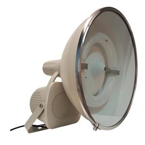 45678-Golf Bright™ 300W w/Slip-Fitter 310-520VAC Ballast