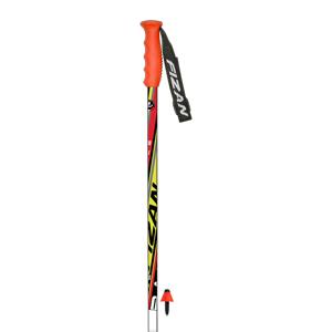 B4419-Fizan Slalom Race Poles-JR