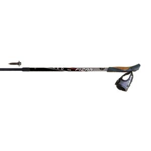 B4594-Fizan Speed Adjustable Nordic Walking Poles