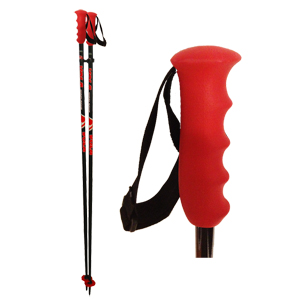 b4040-Vola Slalom Poles