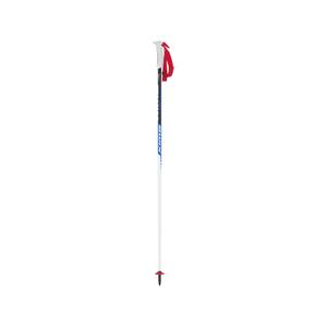 b4123-Swix World Cup Slalom Poles